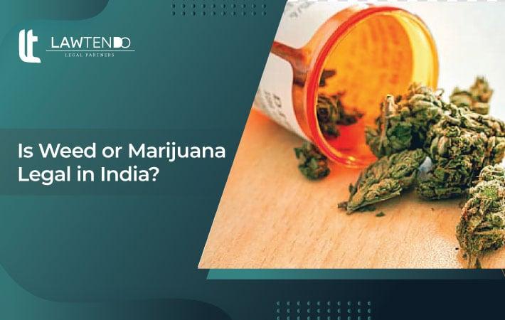 Is Weed or Marijuana Legal in India?